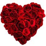 heart-roses1